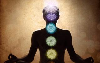 The Multidimensional Human